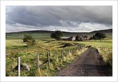MIDDLETON (SwaloPhoto) Tags: clouds sky middleton farm track trees fence posts perthshire scotland autumn fujixt1 fujinonxf18135mm f3556rlmoiswr sunshine shadows