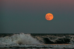 Lluna del Grau (casanomada) Tags: canon gandia valencia spain afternoon sea moon full