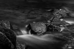 Tiny waterfall (mbernholdt) Tags: 500px black white creek long exposure photography monochrome river rock rocks stone