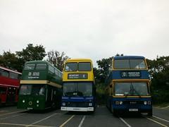 Bromley Bus Preservation Group - Isle of Wight Classic Beer & Buses Weekend (Waterford_Man) Tags: londontransport boroline metrobus olympian leyland xf3 cuv53c 769 h769ekj maidstoneboroline h810agy 810 newportquay isleofwightbeerbusesweekend camra bromleybuspreservationgroup