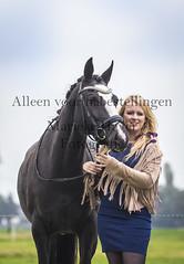 15 oktober 2016-42-2 (MZorro4) Tags: mariekehaverfotografie oudesluis schagen paardenfotografie portretfotos rijden wwwmariekehaverfotografienlpaarden