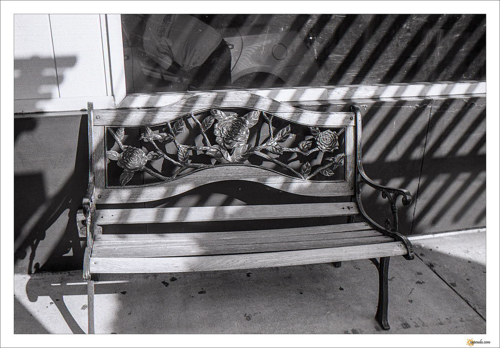 Morning bench