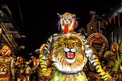 The Big Pulikali Lion of Kerala at Thrissur (Anoop Negi) Tags: travel carnival india tourism festival night painting paint dancing body tiger lion culture kerala event indie carnaval bodypainting anoop indien inde thrissur negi インド 印度 índia הודו 인도 ezee123 độ intia الهند pulikali ấn هندوستان индия індія بھارت индија อินเดีย ינדיאַ ãndia بھارتấnđộינדיאַ indiã indiãíndia
