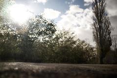 #7956 (UBU ♛) Tags: blues giuliana blunotte unamusicaintesta landscapeinblues luciombreepiccolicristalli ©ubu