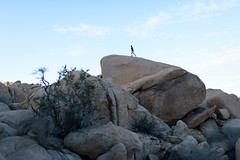 Tyler on a Boulder (playonthefreeway) Tags: nikon desert joshuatree boulder hike pioneertown 35mmf14 d810