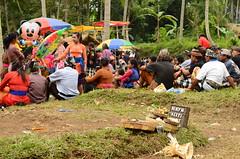 WTF_9444 (Sirio Timossi) Tags: bali indonesia fire village spirit ceremony burning funeral sarcophagus ritual procession hindu ubud reportage cremation deceased moksha reincarnation 2014 ngaben cremated beliefs sirio castes timossi