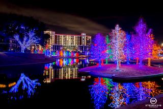 Dallas Event Photographer-9776