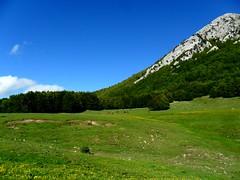 La felicit di Demetra  /  Demetra's happiness (Loredana Consoli) Tags: primavera trekking spring valley pino montagna calabria montain blusky vallata pollino demetra parconazionaledelpollino