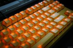 Ducky 9087 Shine3 黃色小鴨版 茶軸 (kivx) Tags: brown yellow cherry keyboard mechanical chinese ducky mx 中文 keycaps 茶軸 pbt 黃色小鴨 shine3 鍵帽 同刻