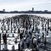 Ice on the Hudson