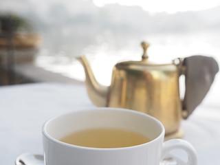 Cup of Tea, Udaipur Lake Pichola Lakeside Rajasthan India See Indien (c)