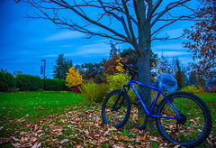 Alone (Mido Melebari) Tags: christmas old blue light red sky music cloud house mountain newyork ontario canada building tree history fall home students hat bike stone canon drums us photo nice team cloudy guelph 5d editing