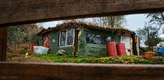 Home sweet home ... (Victor Hugo Ganoza) Tags: españa verde casa madera nikon arboles victor d750 hugo salamanca valla chabola bidones ganoza nikonfxshowcase