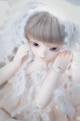 150214 (orememo) Tags: bjd bluefairy shinyfairy