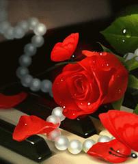 7 imágenes de rosas con movimiento para celular (imagenesdeamorconmovimiento) Tags: de rosas imágenes ramos azules brillantes