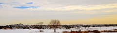 A View Of Saint Charles From Hickory Knolls Discovery Center - IL (Meridith112) Tags: park trees winter panorama cloud snow cold tree clouds town illinois nikon view pano scene il kanecounty february stark saintcharles wideview chicagoist 2015 ottercove nikon2485 nikond7000 hickoryknolls saintcharlesparkdistrict hickoryknollsdiscoverycenter jamesobreencommunitypark