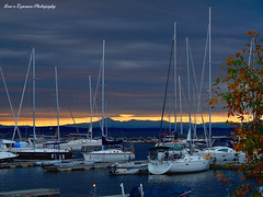 DSCN3160-3WM (moon_hunter2014) Tags: morning trees cloud lake tree water clouds boats dawn boat dock waterfront overcast cast mast plattsburgh lakechamplain nakedturtle