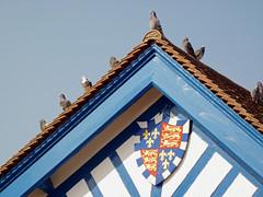 Christ College Boathouse Pigeons Cambridge Mar 2015 (symonmreynolds) Tags: cambridge march pigeons boathouse 2015 christcollege