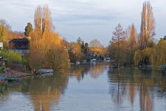 Villennes sur Seine (Yvelines - France) - Vue du pont qui mne sur l'Ile (etienne.narcy) Tags: seine nikon d750 narcy villennes bordsdeseine villennessurseine 70200f28vrii etiennenarcy nikond750