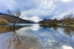 Lake Padarn (Air Force 2) Tags: uk lake mountains english wales snowdonia padarn
