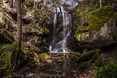 Roughting Linn Waterfall. (strangequark77) Tags: ford nature water waterfall moss northumberland linn fordmoss roughting roughtinglinn