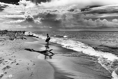 Gioco da solo (masowar (often off, sorry!!)) Tags: sea beach clouds blackwhite nuvole mare waves fuji child bn tuscany toscana spiaggia bianconero biancoenero onde bambino blancetnoir maso tirreno principina masowar massimilianoa x100t massimilianoacquisti