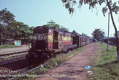 011113_02 (The Alco Safaris) Tags: indian express railways dlw alleppey alco 6307 17483 cannanore wdm2 dl560
