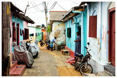 Colour Street (oiZox) Tags: street old city friends light people urban fish colour travelling love window up lines bike kids walking square photography design licht town calle arquitectura nikon asia gente harbour kultur depthoffield d750 urbano srilanka viejo lux libre kandy arquitecture trincomalee mensen dambulla zox fotourbana streetphotagraphy orlandoimperatore zoximage uppavalii