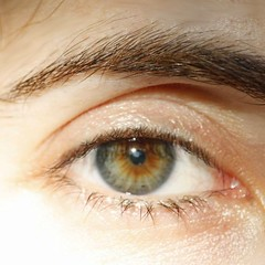 Tricolor (HellaTheViking) Tags: eye color iris tricolor three green gray blue brown strange exotic hazel mixture