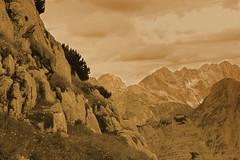 Up there (amenauss) Tags: flowers light sky panorama sun sunlight mountain lake alps monochrome animal rock stone fauna clouds landscape julian flora view outdoor hiking horns goat slovenia alpine valley sight tolmin dolina isonzo triglav steinbock capra chamois stenar gams soa kranjskagora bovec jesenice kobarid trenta kozorog zadnjica gamsovec divokoza