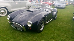 AC Cobra at Ripon Old Cars (sarahinkpin) Tags: accobra car