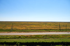 horizon (alexkrug80) Tags: ukraine summer horizon
