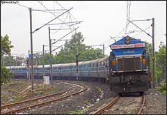 BGKT WDP-4B (Abhishek Jog) Tags: dashing bgkt wdp4b 40031 lhf slowly approaching towards bhopal jn charging time running 19713 jpsc express bhagat ki kothi bih from bairagarh seh sehore bpl junction bhopaljn jp sc jaipur secunderabad jaipursecunderabad hbj habibganj et itarsi