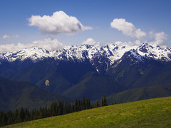 An Olympic Spring (RobertCross1 (off and on)) Tags: trees snow mountains nature clouds forest landscape washington spring olympicpeninsula bluesky olympus glacier pacificnorthwest wa olympicnationalpark hurricaneridge omd em5 1250mmf3563mzuiko
