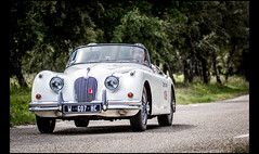 Jaguar XK 150 Roadster (Laurent DUCHENE) Tags: 150 jaguar roadster xk 2016 tourauto peterauto saintvictorlacoste