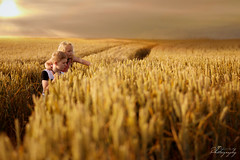 ... just be free ... (Margarita K...) Tags: england uk great britain goldenhour gold child childhood fairytales portrait ngc sunset wheat grain nikon d5200 mkphotography margaritakphotography