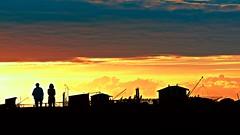 Cabanes aux soleil d'or ! (Patevy Damant) Tags: coucherdesoleil exterieur medoc olympus paysage silhouette sunset aquitaine ciel nuage