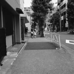 160619_ZenzaBronicaS2_011 (Matsui Hiroyuki) Tags: fujifilmneopan100acros zenzabronicas2 nikonnikkorp75mmf28 epsongtx8203200dpi