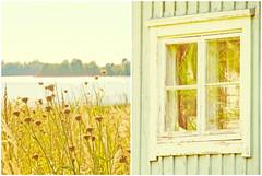 Lakeside Days (mintukka) Tags: dippy diptych summer pastel lake window cottage hut lakeside light summertime soft beach heat