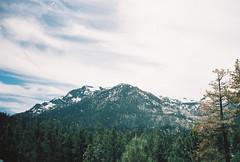 (JamesThmas) Tags: california 35mm contax t2 photography portra america roadtrip landscape portrait fujifilm kodak beach ocean lake tahoe yosemite venice santa monica sequoia san diego los angeles francisco big sur cruz
