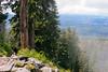 IMG_4203.jpg (Backpacking With Bacon) Tags: washington northerncascades hiking mtpilchuck granitefalls unitedstates us