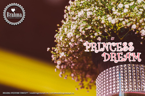 Braham-Wedding-Concept-Portfolio-Princess-Dream-1920x1280-14