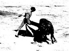 remate (aficion2012) Tags: ceret 2016 novillada corrida toros bulls bull fight novillos france francia d mario y hros de manuel vinhas abel robles monochrome monotone duotone bw torero matador novillero