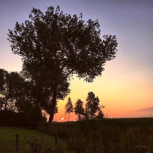 Sunrise in Haasdonk