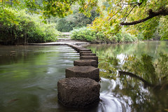 Stepping Stones I, Box Hill (Dave Searl) Tags: water stepping stones river mole long exposure surrey box hill