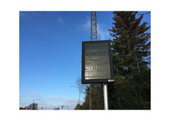 Info. Aarhus, Denmark (2016-02) (csinnbeck) Tags: info iphone iphone6 denmark aarhus jylland jyllandsall pole board screen monitor infoboard billboard aesys pine fir tree green winter 2016 februar february 02 deadpan