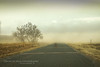 Tumbling Tumbleweeds (Chains of Pace) Tags: road storm oklahoma weather unitedstates dust tumbleweed oldwest guymon