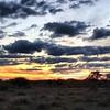 Botswana Hunting Safari 20