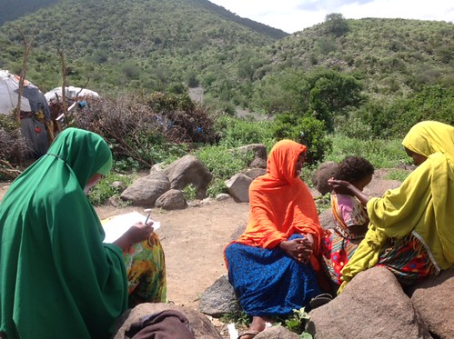 ISTVS data collection from the HH questionnaire in Gidil (Somaliland) with femal community members