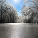 Icy Fairytale   Kinston, NC